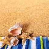 Cuadrado del fondo de la costa de la concha marina de las estrellas de mar de la frontera de la playa del verano Fotografía de archivo libre de regalías