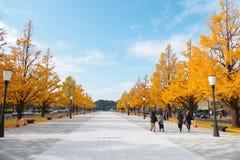 Cuadrado delante del JR estación de Tokio de la estación de Tokio Fotos de archivo libres de regalías