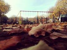 Cuadrado en otoño foto de archivo