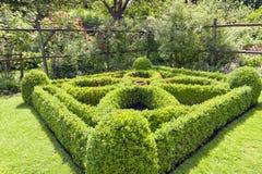 Cuadrado enorme del Topiary en un jardín del país Fotografía de archivo