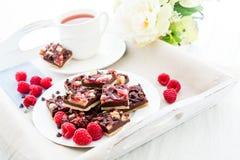 Cuadrados de la frambuesa del chocolate Imagen de archivo libre de regalías
