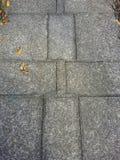 Cuadrados del cemento Foto de archivo libre de regalías