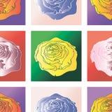 Cuadrados del modelo con las rosas Fotos de archivo libres de regalías