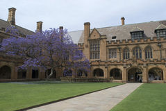 Cuadrilátero de la universidad de Sydney Fotografía de archivo libre de regalías