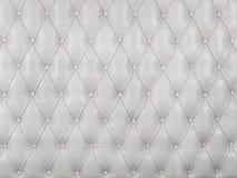 Cuadro blanco de la tapicería del cuero genuino Imagenes de archivo