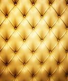 Cuadro del cuero genuino Foto de archivo libre de regalías