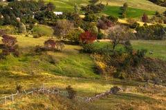 Cuadro del otoño Foto de archivo libre de regalías