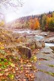 Cuadro del otoño Rocas del río con las hojas amarillas que caen Secuencia de la montaña Imagenes de archivo