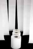 Cuadro del papel higiénico Fotos de archivo