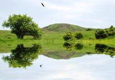 Cuadro hermoso del paisaje Fotografía de archivo libre de regalías