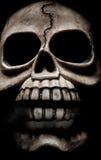 Cuadro oscuro del horror del cráneo Fotos de archivo libres de regalías