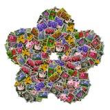 Cuadros de la flor Fotografía de archivo