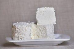 Cuajada de queso fresco Imagen de archivo libre de regalías