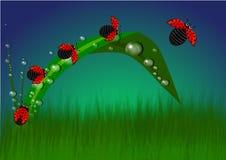 Cuando el rojo resuelve verde ilustración del vector
