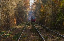 Cuando la tranvía de la ciudad pasa a través del bosque Imagenes de archivo