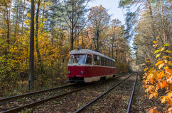 Cuando la tranvía de la ciudad pasa a través del bosque Imagen de archivo libre de regalías