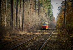 Cuando la tranvía de la ciudad pasa a través del bosque Fotografía de archivo