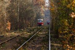Cuando la tranvía de la ciudad pasa a través del bosque Fotos de archivo libres de regalías
