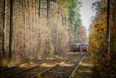 Cuando la tranvía de la ciudad pasa a través del bosque Fotografía de archivo libre de regalías