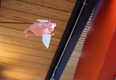 Cuando los cerdos vuelan Fotografía de archivo libre de regalías