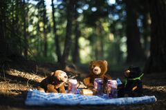 Cuando Teddy Bears tiene su comida campestre imagenes de archivo