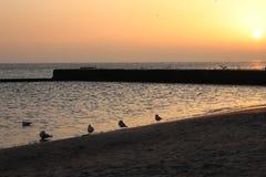 Cuando usted ama la salida del sol sobre el mar fotografía de archivo
