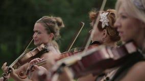 Cuarteto musical Tres violinistas y violoncelista que juegan música Cierre para arriba almacen de video