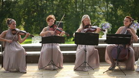 Cuarteto musical Tres violinistas y violoncelista que juegan música Posibilidad muy remota almacen de metraje de vídeo