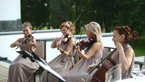 Cuarteto musical Tres violinistas y violoncelista que juegan música Tiro medio almacen de metraje de vídeo