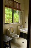 Cuarto de baño con la opinión tropical de la selva fotografía de archivo