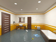 Cuarto de baño de la inundación Fotografía de archivo