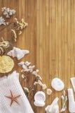 Cuarto de baño fijado en un fondo de madera. Foto de archivo libre de regalías