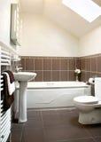 Cuarto de baño tejado Fotografía de archivo