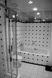 Cuarto de baño de B&W Fotografía de archivo