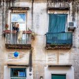 Cuartos del español de Nápoles Fotografía de archivo libre de regalías