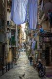 Cuartos del español de Nápoles Imagen de archivo