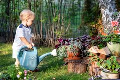 Free Cuate Adorable Caucasian Blond Little Toddler Boy In Watering Flowerbed Flower Pot With Green Plastic Can Outdoors. Fun Baby Boy Stock Photography - 176736052