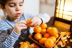 Cuatro años de muchacho comen un mandarín Imagen de archivo libre de regalías