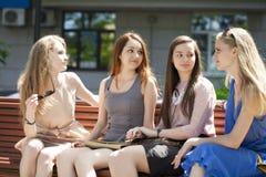 Cuatro adolescentes que se sientan en banco en parque del verano Foto de archivo libre de regalías