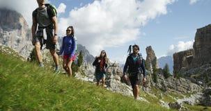 Cuatro amigos que caminan a lo largo de la trayectoria salvaje de la pista de senderismo Grupo de viaje de la aventura del verano metrajes