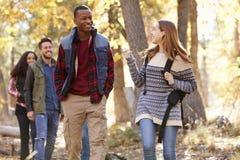 Cuatro amigos que hablan como caminan a través de un bosque Fotografía de archivo
