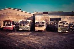 Cuatro autobuses viejos en un desguace alemán en luz del sol Foto de archivo libre de regalías