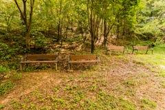 Cuatro bancos de parque de madera en una área arbolada Fotos de archivo libres de regalías