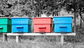 Cuatro colmenas coloridas Fotografía de archivo libre de regalías