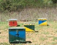 Cuatro colmenas de la abeja Imagenes de archivo