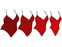 Cuatro diversos tamaños del traje de baño femenino Imagen de archivo libre de regalías