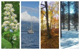 Cuatro estaciones Fotos de archivo
