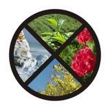 Cuatro estaciones - collage del círculo de la naturaleza Fotos de archivo libres de regalías