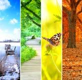 Cuatro estaciones coloridas Foto de archivo libre de regalías