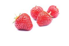 Cuatro fresas en un fondo blanco con la sombra, vista lateral Imagen de archivo libre de regalías